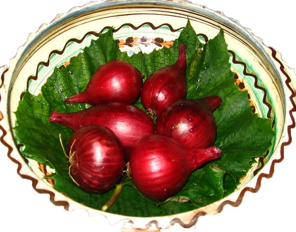 Salata de ceapa coapta
