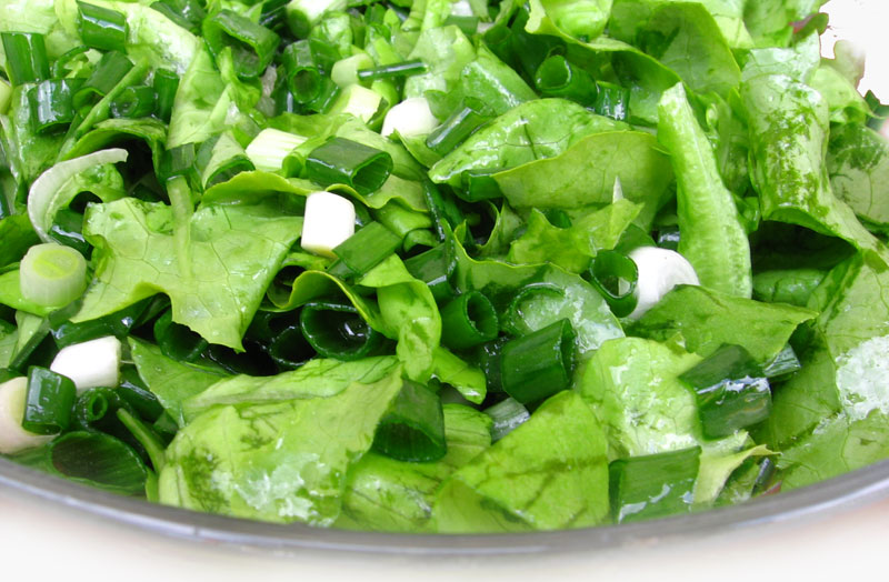 Salata cu ceapa verde